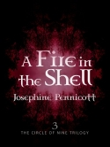 Fire In The Shell Book 3